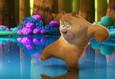 Медведи Буни: Таинственная зима 8