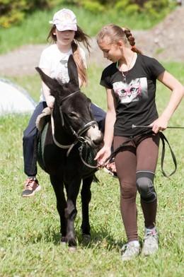 Экскурсия по конному клубу
