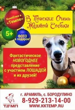 «В Поисках Очень Жёлтой Собаки»
