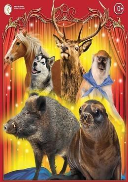 Цирковые легенды
