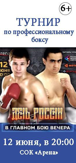 Турнир по профессиональному боксу