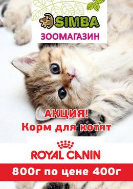 """АКЦИЯ в зоомагазине """"SIMBA""""!"""
