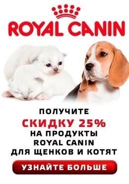 ТОЛЬКО У НАС!!! Скидка 25% на корм для котят и щенков!