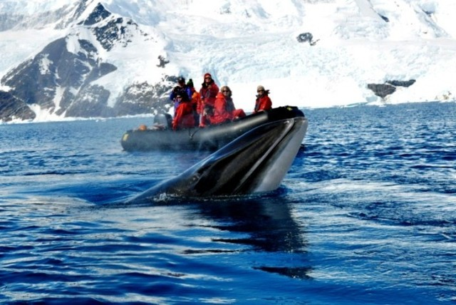 замерзшая подводная лодка в антарктиде