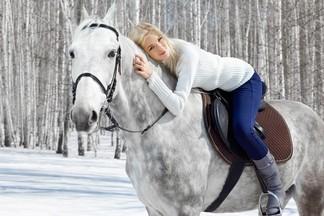 Будь на коне – где в Екатеринбурге можно совершить конные прогулки?