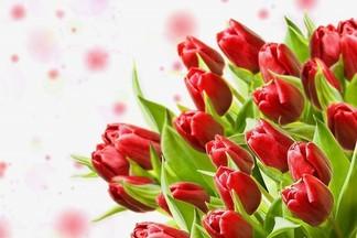 Букет из овощей, макарунов и плюшевых мишек – где в Екатеринбурге найти самые оригинальные цветочные букеты?