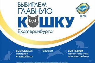 Радиола 106.2 FM выбирает Главную кошку Екатеринбурга