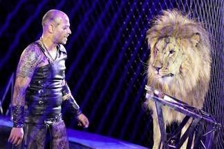 Как приручить кошку? В цирке проходит новая эксклюзивная программа «Нубийские львы».