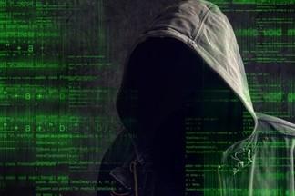 Кто такой белый хакер  и как им стать: школьников Екатеринбурга обучат информационной безопасности