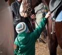 Учёная лошадка Детский праздник, фото № 50