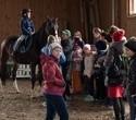 Учёная лошадка Детский праздник, фото № 34