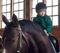 Учёная лошадка Детский праздник, фото № 42