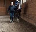 Учёная лошадка Детский праздник, фото № 49