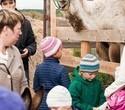 Учёная лошадка Детский праздник, фото № 27