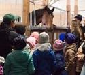Учёная лошадка Детский праздник, фото № 5