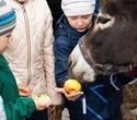 Учёная лошадка Детский праздник, фото № 24