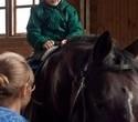 Учёная лошадка Детский праздник, фото № 40