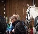 Учёная лошадка Детский праздник, фото № 41