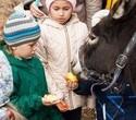 Учёная лошадка Детский праздник, фото № 25