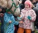 Учёная лошадка Детский праздник, фото № 21