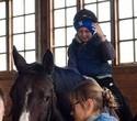 Учёная лошадка Детский праздник, фото № 46