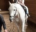 Учёная лошадка Детский праздник, фото № 36