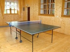 База отдыха Светлая Настольный теннис