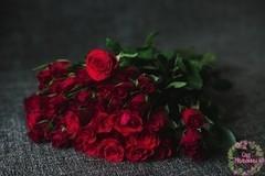 Сад Мальвины Роза Кения