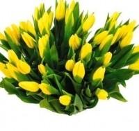 Flo-мастер Букет из желтых тюльпанов - фото 1